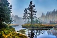 Malerische Landschaft An Einem Nebligen Morgen An Einem Schwedischen Fluss