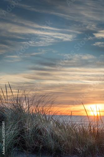 Fotografie, Obraz  Ocean Sunrise