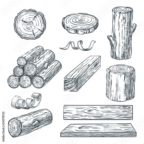 Valokuva Wood logs, trunk and planks, vector sketch illustration