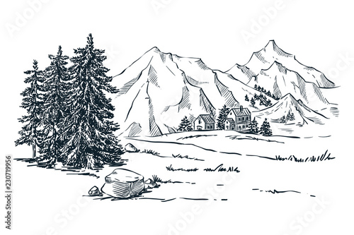 Mountains, spruce and pine trees landscape, vector sketch illustration Slika na platnu