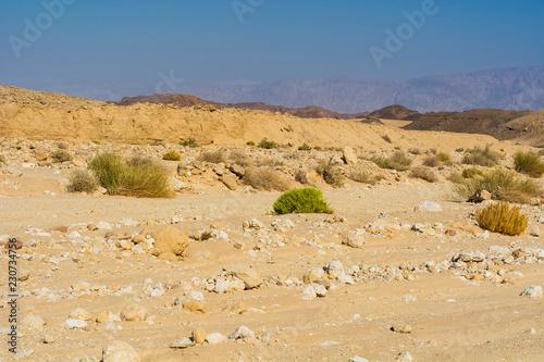 Spoed Foto op Canvas Zandwoestijn Whimsical Patterns of the Desert