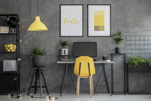 Grey Home Office With Yellow Accents And Urban Jungle In Modern Apartment, Real Photo With Mockup