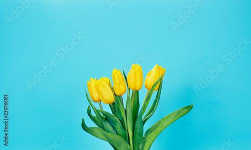 Foto op Canvas Bloemen bouquet of yellow tulips on a blue background