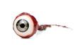 Leinwandbild Motiv Halloween prop, decoration. Close up of ripped out eyeball isolated on white background