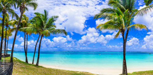 Perfect tropical beach scenery with palms and turquoise sea. Mauritius island