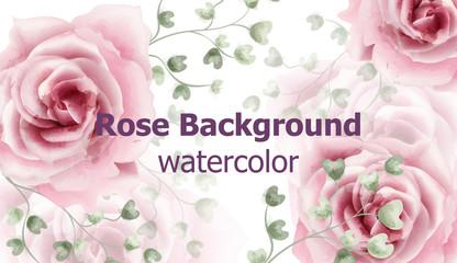 Rose flowers background watercolor Vector. Delicate vintage pastel pink color floral decors banners