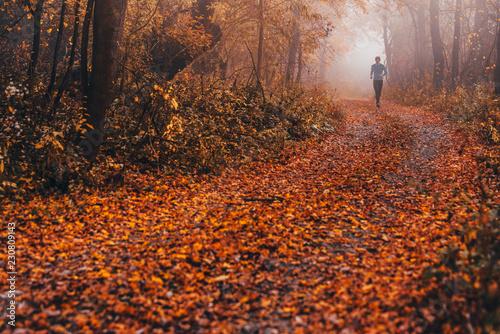 Trail runner run in misty autumn forest