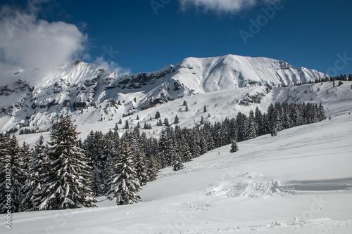 Domaine skiable de Megève en hiver , dans les Alpes