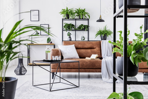 Urban Jungle In Modern Living Room Interior With Big Comfortable