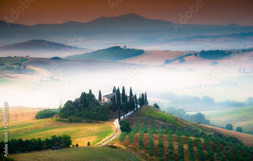 Fotografie, Obraz  Toscana