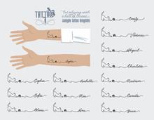 Татуировка на руке, кошка играет клубком ниток, женское имя, Sophia, Olivia, Isabella, Mia, Ava, Emily, Sofia, Victoria, Abigail, Charlotte, Madison, Camila, Grace, иллюстрация, вектор