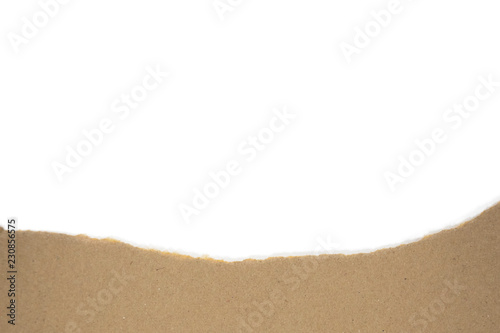 Fotografie, Tablou  Isolated Tron Brwon Paggage Paper with White Blank Copyspace