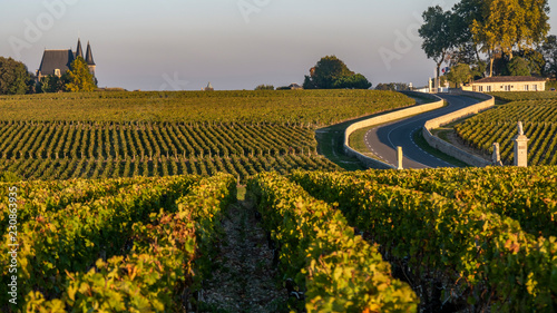 La pose en embrasure Vignoble Route des Chateaux, Vineyard in Medoc, famous wine estate of Bordeaux wine
