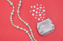 Pearl Necklace And Silver Purse With Shiny Gems