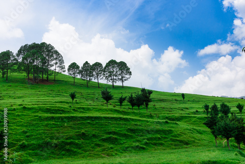 Foto op Canvas Olijf Mountain Landscpae with Blue Sky