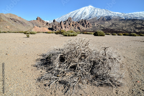 In de dag Canarische Eilanden Desert Landscape in Volcan Teide National Park