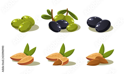 Fototapeta Fresh olives and almond nut, vegetarian healthy organic product set vector Illustration on a white background obraz