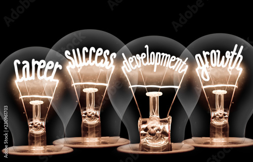 Canvastavla  Light bulbs concept - Career, Success, Development, Growth