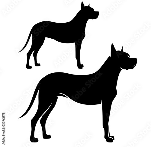 Fototapeta standing great dane dog side view black vector silhouette obraz