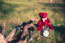 Teddy Bear Sit On Ruins Wood And Hang Alarm Clock With Tone