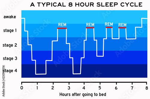 sleep cycle Wallpaper Mural