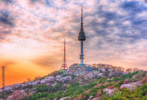 Wallpaper Mural Namsan tower in spring at seoul south Korea