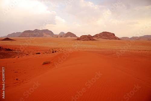 Foto op Plexiglas Rood traf. panoramic view of wadi rum desert lookin like mars planet with rocks and red sand