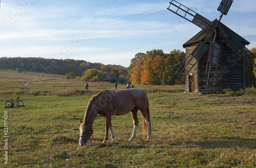 traditional Ukrainian autumn rural view with windmill and horse