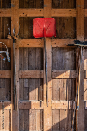 Fotografie, Obraz  Attrezzi agricoli manuali appesi nella stalla