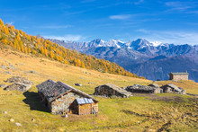 Stone Huts And Colorful Woods In Autumn With Bernina Group On Background, Alpe Arcoglio Valmalenco, Valtellina, Lombardy
