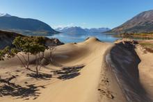 Sand Dunes Of Cracross Desert, The Smallest Desert In The World. Yukon Canada.