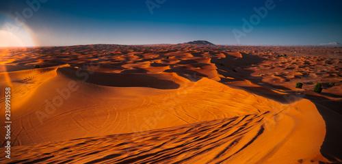 Tuinposter Algerije Desert at sunset. Sand dune in the desert.
