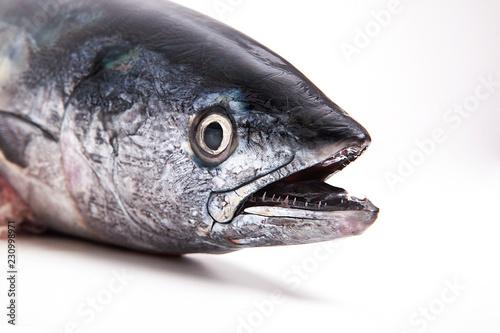 taze balık Fototapeta
