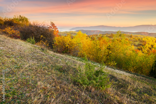 Spoed Foto op Canvas Honing autumn sunrise in mountains. weathered grass and trees in fall foliage. valley of fog and mountain ridge in the distance. sky with blurred reddish clouds