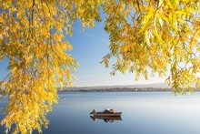 Boat In A Calm Lake, Autumn At...