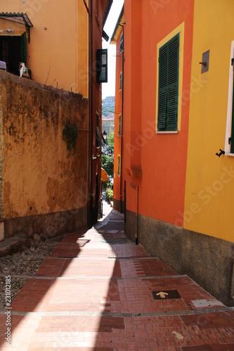 Tuinposter Smal steegje Vicolo stretto assolato tra le case del borgo di Lerici