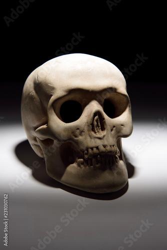 Garden Poster UFO Skull of death