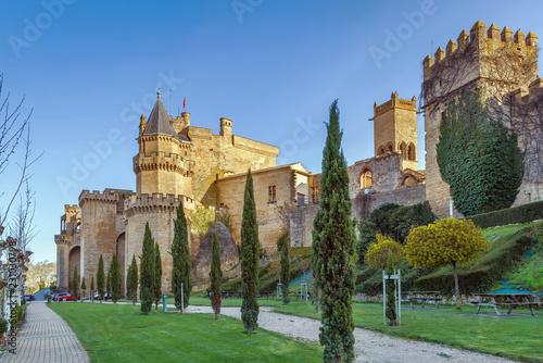 Foto  Palace of the Kings of Navarre, Olite, Spain