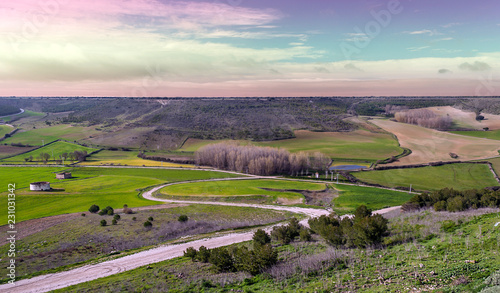 Fields of Uruena in Valladolid