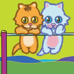 遊び好きな2匹の仔猫の、チンチラキャッツ篇02。