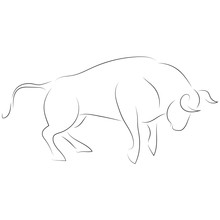 Black Line Attacking Bull On White Background. Hand Drawing Vector. Sketch Style Graphic Animal.