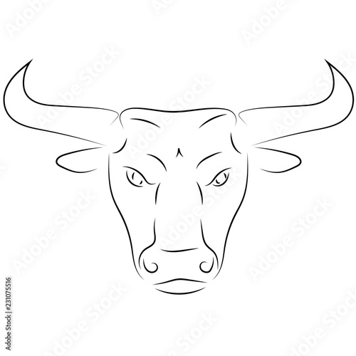 Photo  Black line bull head on white background