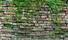 Texture Of Old Brick Wall Covered Green Moss