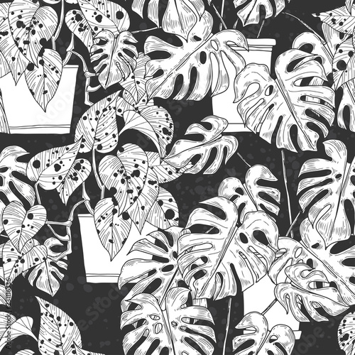 bezszwowy-wzor-z-scindapsus-aureus-eagler-i-monstera-w-garnkach-na-czarnym-tle-wektorowa-monochromatyczna-ilustracja