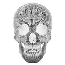 3D Illustration Of Crystal Skull - Isolated On A White Background