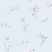 Seamless Pattern, Background With Tropical Birds