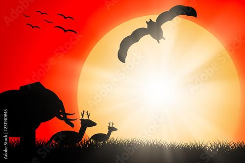 Foto op Aluminium Draken Silhouette animals Sun in the evening