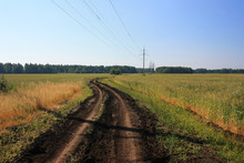 Country Dirt Road In The Field