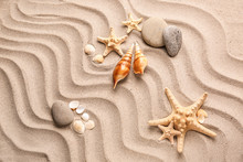 Different Sea Shells With Starfishes And Stones On Sand