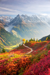 Obraz na SzkleRed autumn Chamonix in the Alps